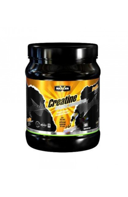 Creatine Professional 500гр банка